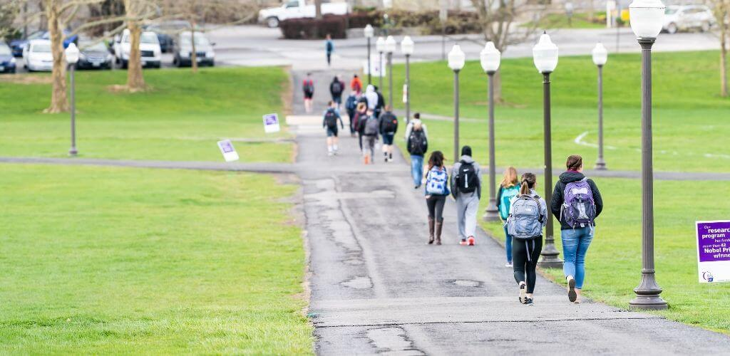 students walking on a walkway on a college campus